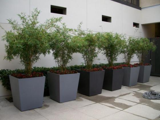 Exklusive Lösungen für Ihren Garten