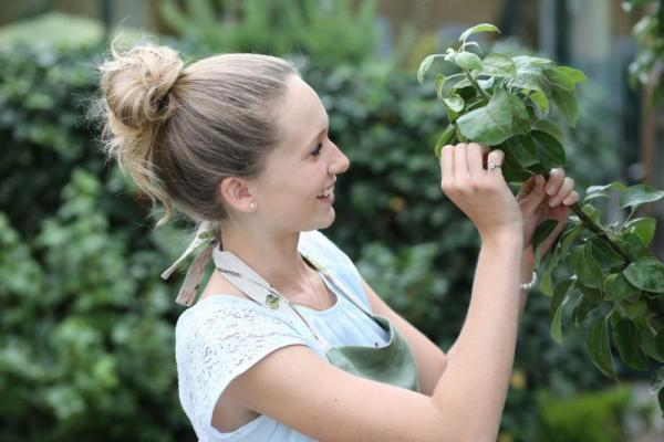 Gartenservice für Wien und Umgebung