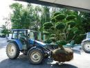 Gartenarchitektur