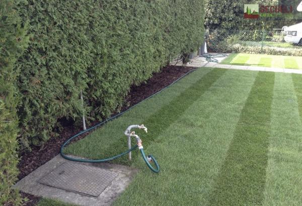 Gartengestaltung Rollrasenverlegungen