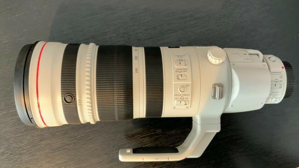 Canon EF 4,0/200-400 L IS USM mit Extender 1,4x